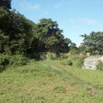 Die alte Zuckermühle auf Tobago