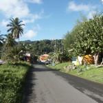 Straße in Speyside