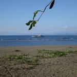 Küste bei Sabayan