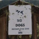 Hunde-Verbotsschilder in Neuseeland